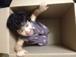 residential-movers-packers-dubai-uae